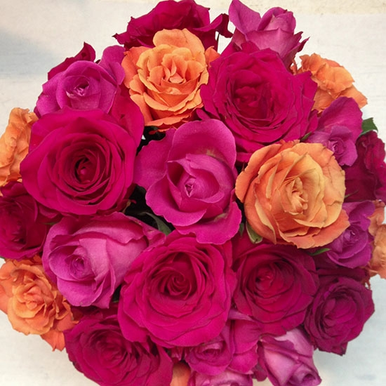 Mixed <br /> Roses